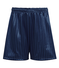 David Luke Polyester Shadow Stripe Short