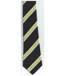 St Bernadette School Tie