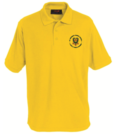 St Stephen's Polo